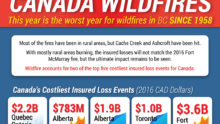 Canada Wildfire Infographic for Intermap